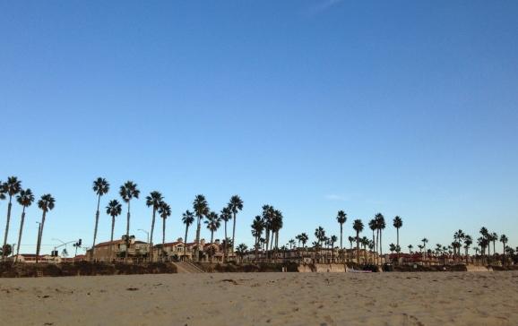 beach11.15.14
