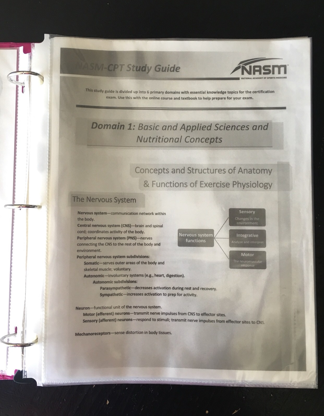 Nasm cpt study guide 2013 ebook array cpt test study guide 2013 rh cpt test study guide 2013 mollysmenu us fandeluxe Images